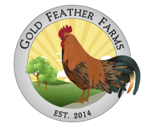 gold feather farm logoweb top